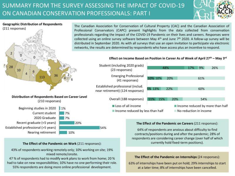 Pandemic Survey Summary
